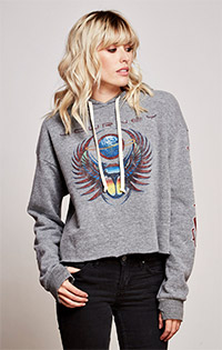 Journey Long Sleeve Crop Pullover Hoodie