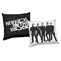 NKOTB Pillow