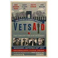 VetsAid Poster