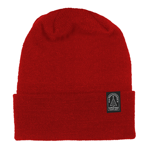 Christmas Tour Red Beanie